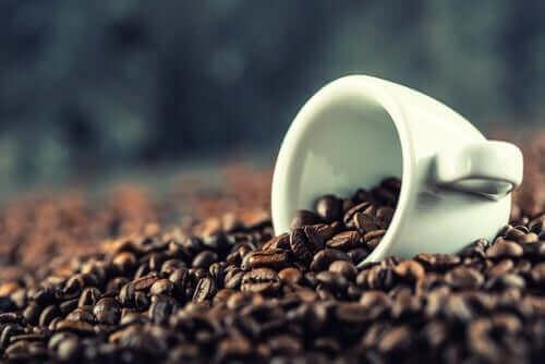 çekirdek halinde kahveler ve zihinsel performans