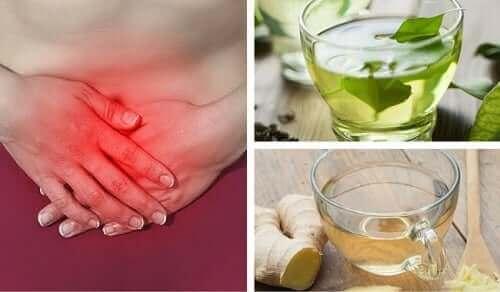 Çeşitli bitkilerin içinde bulunan bileşenler mide hastalıklarını önlemede işlevseldir.