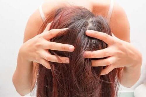 Sağlıklı Saçlar için Biberiye