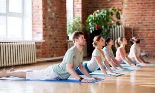 birlikte yoga yapan insanlar