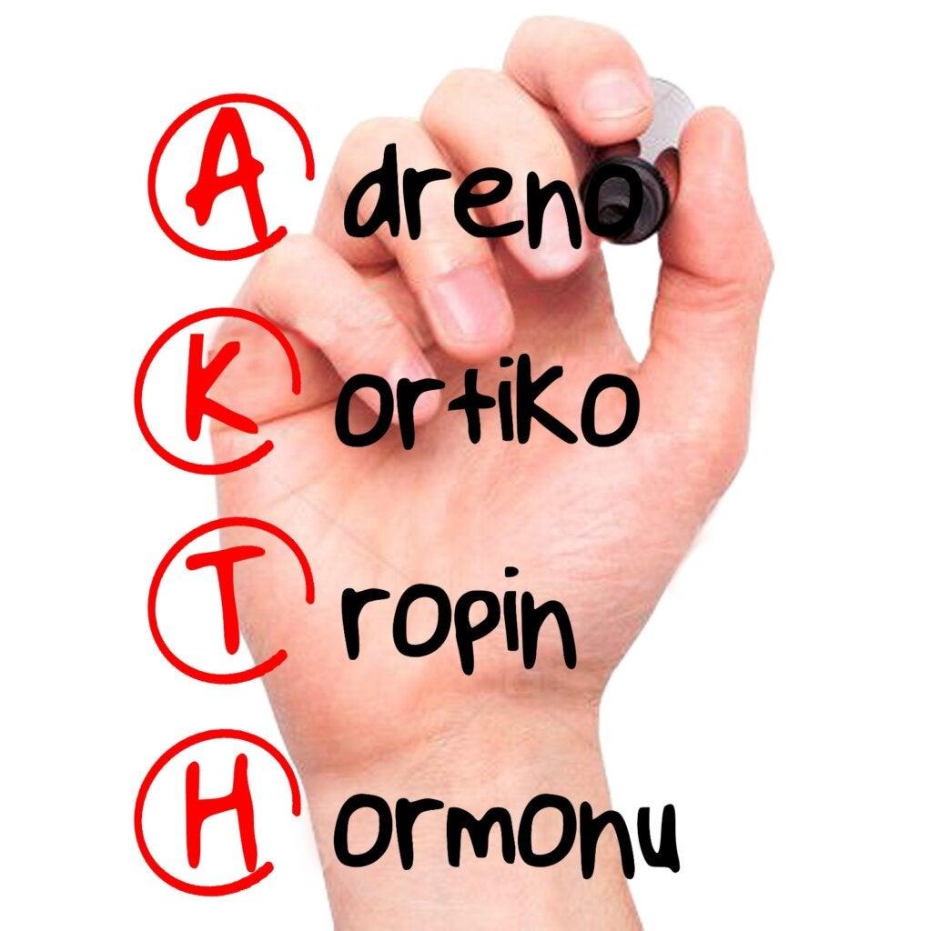 Kortikotropin Hormonu: Özellikleri ve Etkileri