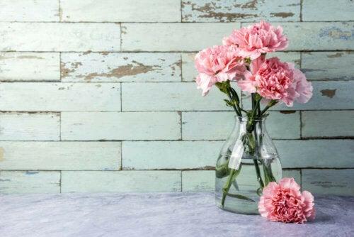 Cam Vazolarınızı Temizlemek İçin Üç Hızlı Yol