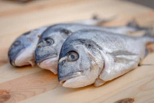 Balıkta Cıva: Endişelenmeli Misiniz?