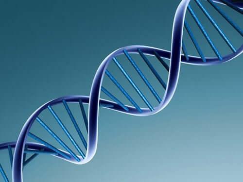 DNA sarmalı illüstrasyonu.