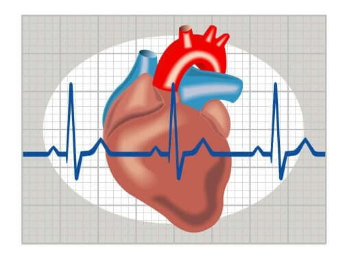 kalp grafisi