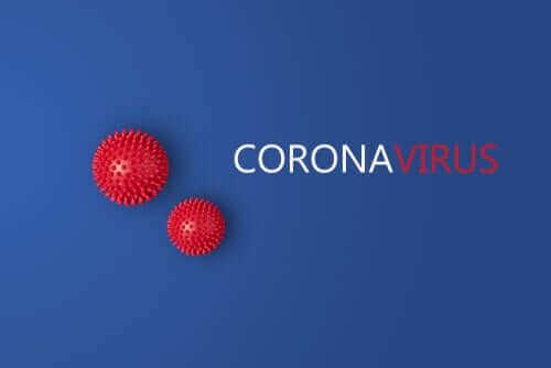 Yeni Bir Çalışma İki Farklı Koronavirüs Suşuna İşaret Ediyor