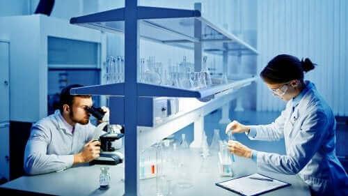 bir laboratuvarda koronavirüs üzerinde çalışan araştırmacılar