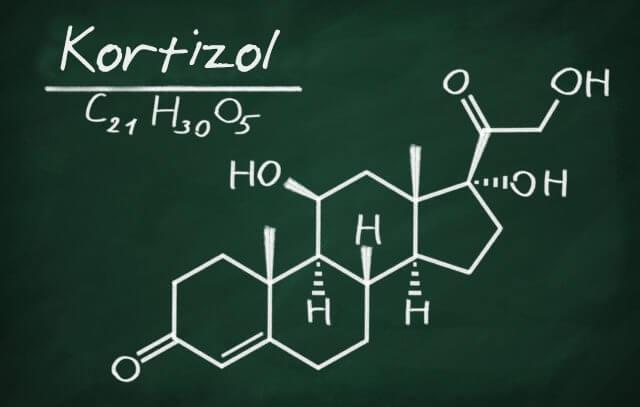 Kortikotropin hormonu ve kortizol