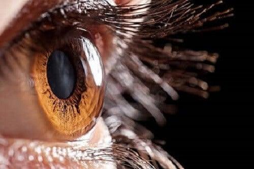 Bir kişinin gözünün yakın çekim bir fotoğrafı.