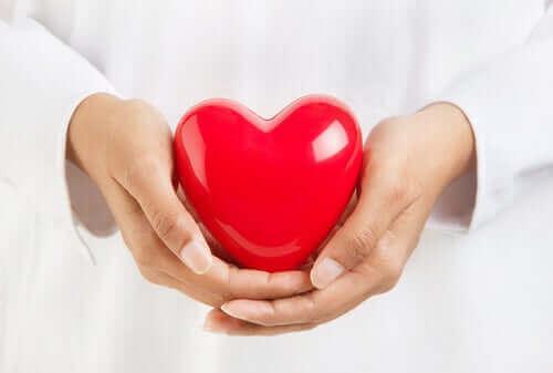 Elinde temsili bir kalp tutan bir doktor.
