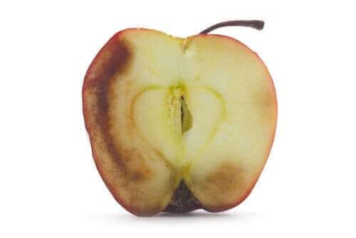 Kararmış Meyve Yemenin Sonuçları