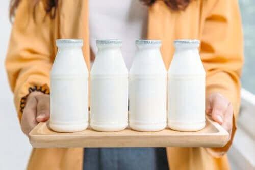 Tam Yağlı Süt Ürünleri Mi Az Yağlı Süt Ürünleri Mi?