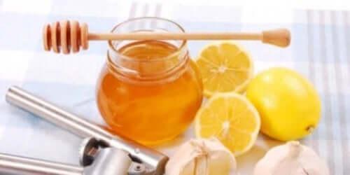limonun özellikleri