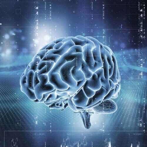 opioid bağımlılığı beyin resmi