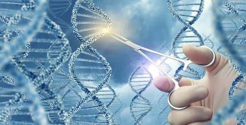 dna genetik dizilim makas