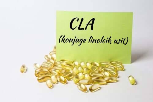 Konjuge Linoleik Asit ve Sağlığa Faydaları