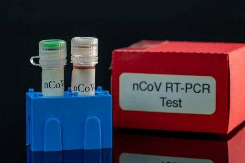 bir PCR testi kiti
