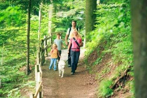 Köpekleri ile yürüyüşe çıkmış bir aile.