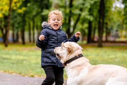 Köpekten korkan bir çocuk.