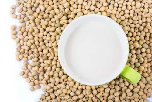 soya proteini faydaları
