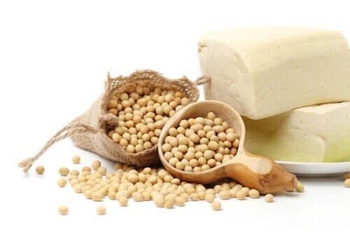 soya proteini özellikleri