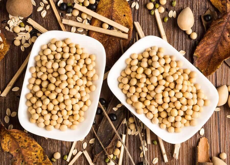 Soya Proteini: Sağlığınız İçin İyi mi Kötü mü?