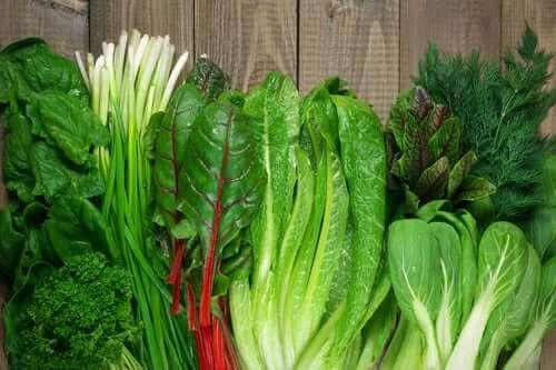Bazı yeşil yapraklı sebzeler.