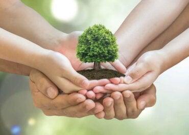 Evinizde Çevreyi Korumak İçin 10 İpucu