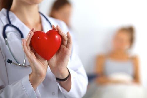 Elinde bir kalp tutan bir doktor.
