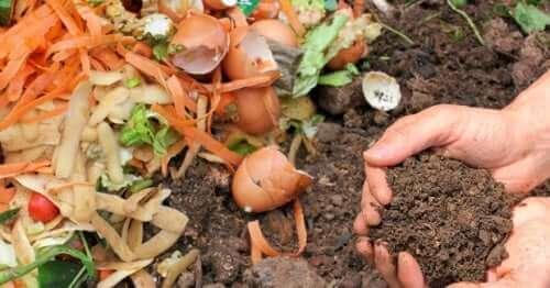 Kompost yapan bir kişi.