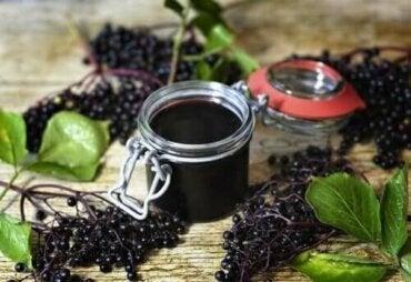 Kara Mürver Bitkisinin Kanıta Dayalı Faydaları Nelerdir?