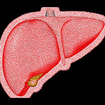 Dünya Hepatit Günü: Bu Hastalık Önlenebilir