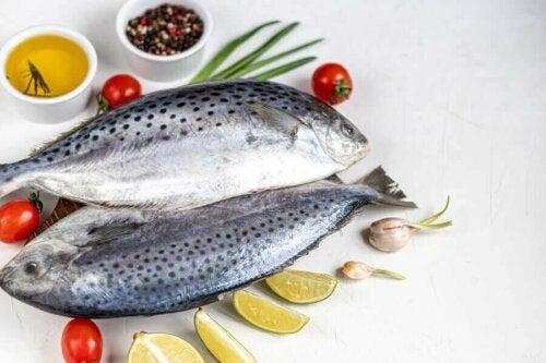 atlantik diyeti balık