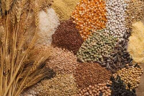 Beslenme Programına Tohumları Eklemek İçin 3 İpucu