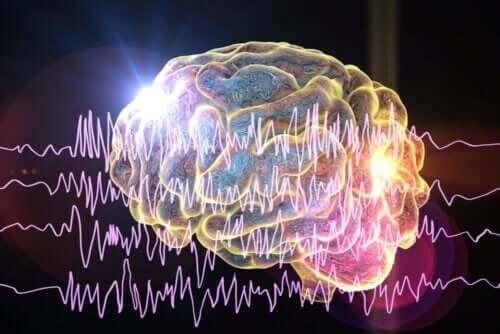beyin elektrik aktivite