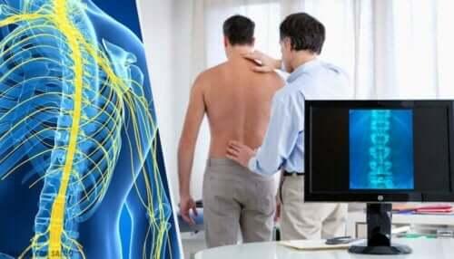 Bir kişinin omurga röntgeni.