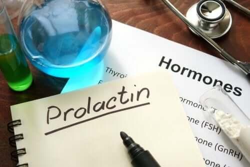 Prolaktin: Nedir ve Nasıl Çalışır?