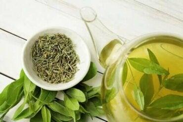 Yeşil Çay Yaşam Süresini Arttırır, Biliyor Muydunuz?