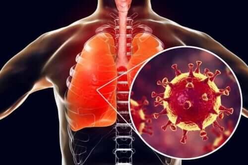 Akciğer ve virüs görseli