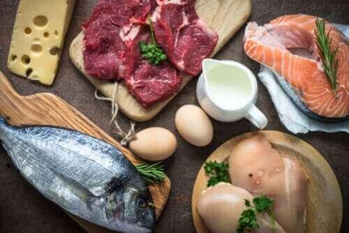 Protein Tüketmek Neden Çok Önemlidir?