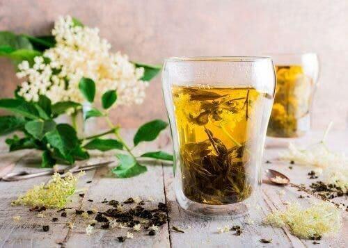 mürver çiçeği çayı