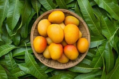 Bir kase mango.