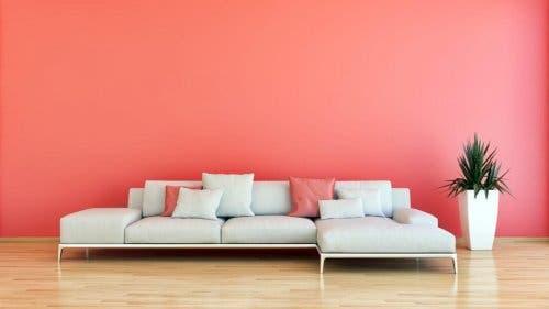 Mercan rengi boyanmış bir oda.