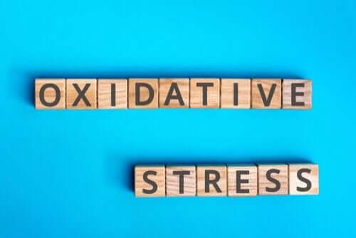 Oksidatif Stres Nelerden Oluşur?