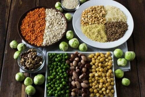 Bitkisel kaynaklı proteinler