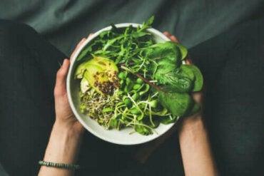 Vegan, Vejetaryen ve Fleksitaryen Arasındaki Farklar