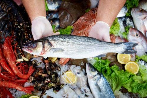 Bazı balıklar ve deniz ürünleri.