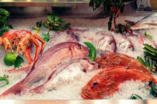 Balıktaki Cıva ve Etkileri