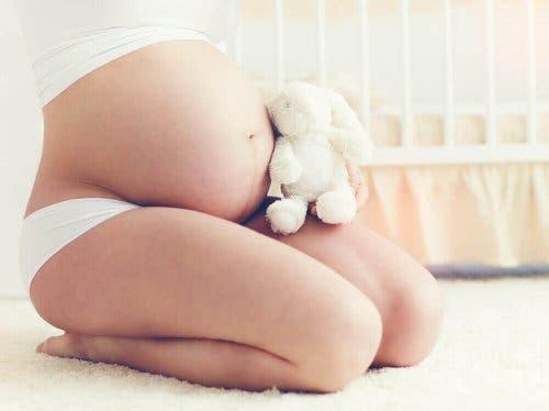 Karnının önünde peluş bir hayvan tutan bir hamile kadın.