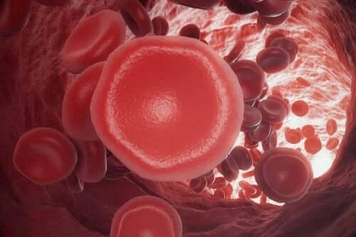 kan pıhtısının dijital görseli